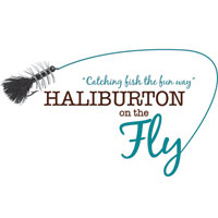 Haliburton On The Fly